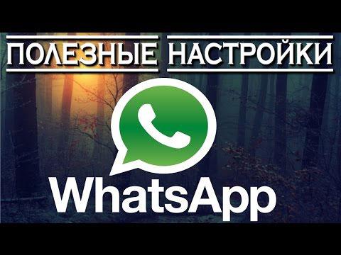 лого и надпись watsapp