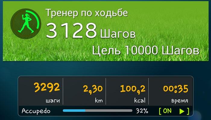 пример заданных параметров 10000 шагов