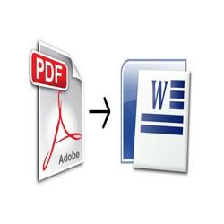 Как конвертировать из PDF в Word: лучшие сервисы