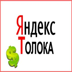 Работа с Яндекс Толока: как осуществляется вход в личный кабинет, примеры заданий и вывод средств